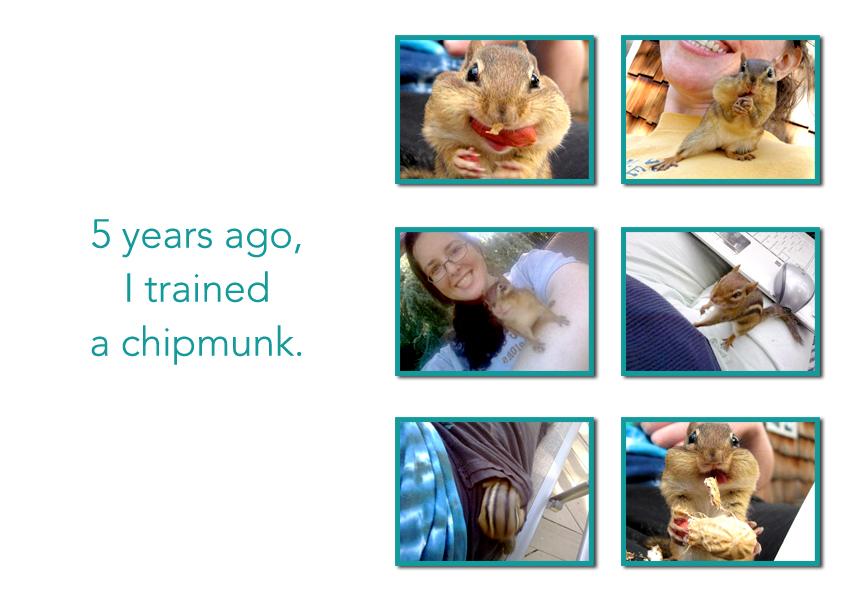 18_chipmunk
